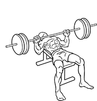 200px-Bench-press-2.png